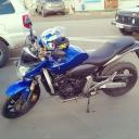 Honda CB 600 F Hornet «Hornet»